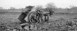 Ploughing in Huntingdonshire